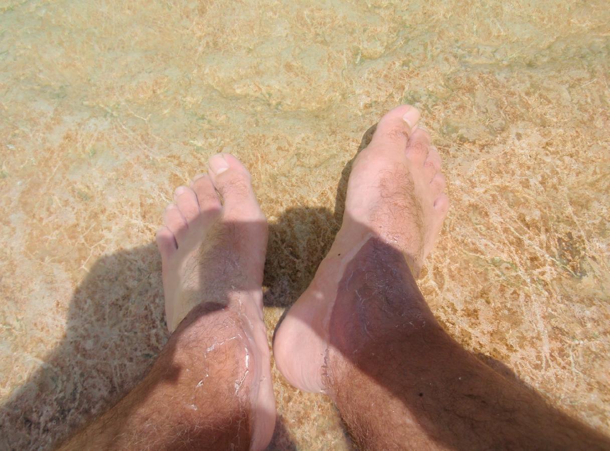 Je vous accueille les pieds dans l'eau